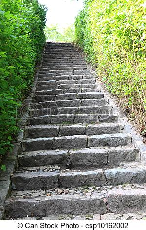 Stock Photography of Concrete stairs in the jungle nature outdoor.