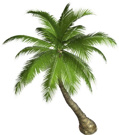 Nature PNG images free download.