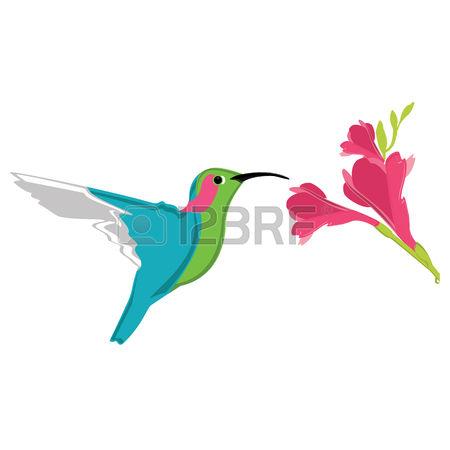 7,837 Bird Zoo Stock Vector Illustration And Royalty Free Bird Zoo.