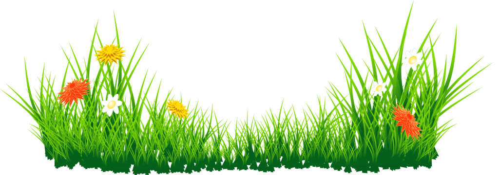 picsart CB editing grass png, Nature grass png zip file.