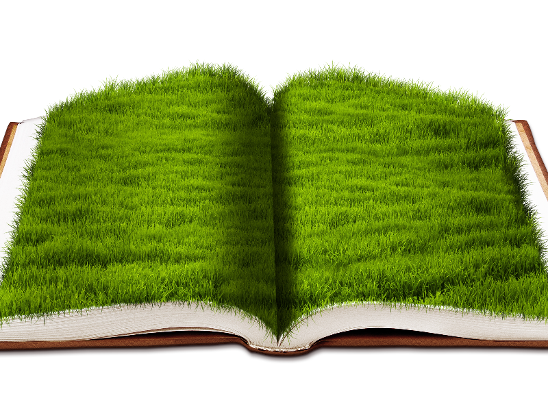 Open Book With Green Grass Png Background Image Free (Nature.