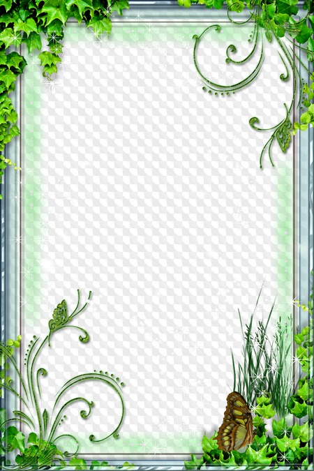 Fairy Forest photo frame collage ( free nature frame psd.