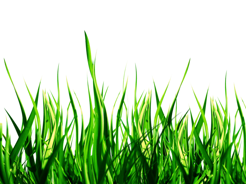 Download nature png images background png.