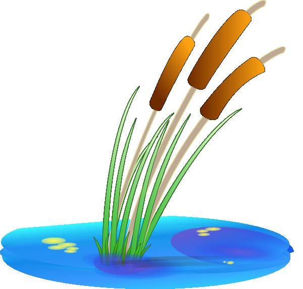 Reed clip art Free Vector / 4Vector.