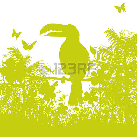 6,729 Nature Reserve Stock Vector Illustration And Royalty Free.