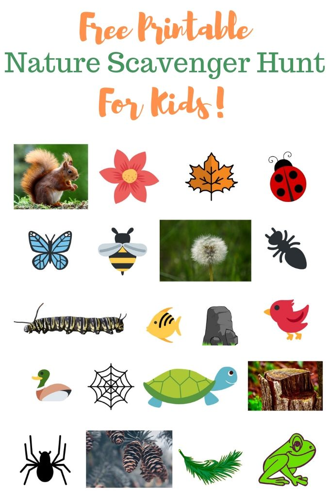 Free Nature Scavenger Hunt Printable for Kids.