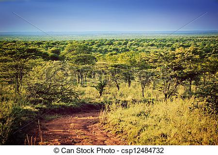 Nature serengeti clipart #12