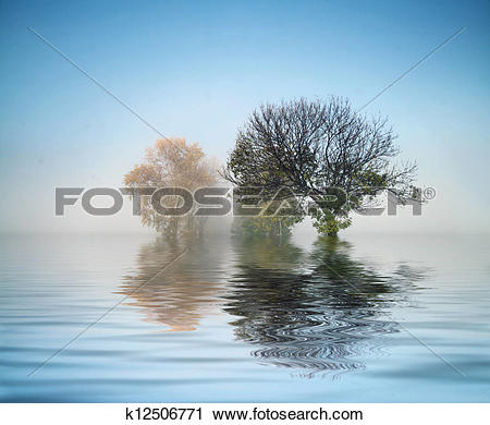 Stock Photography of Marvelous shot of the nature k12506771.