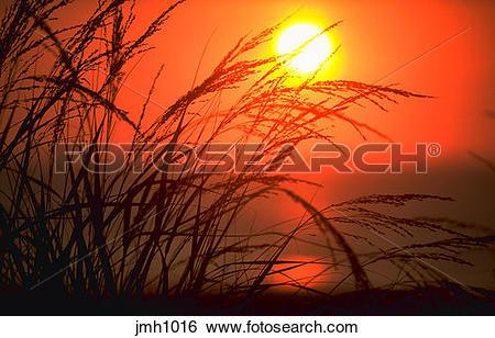Stock Images of Sunrise along the Atlantic coast. Shot through.