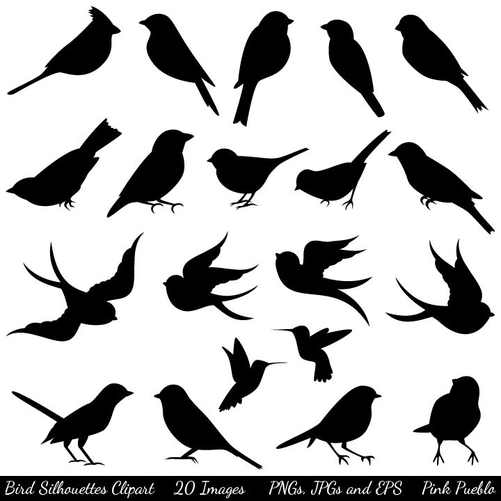 Home Clipart and Vectors Nature Bird Silhouettes Clipart and.
