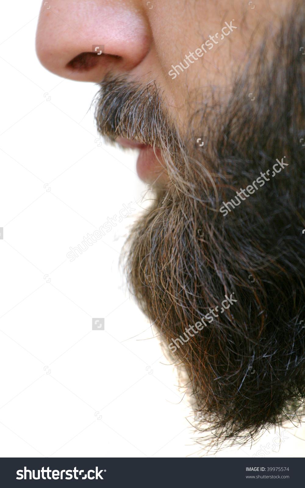 Beard Closeup Stock Photo 39975574.
