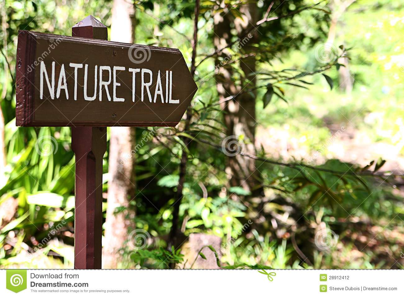 Nature trail clipart.