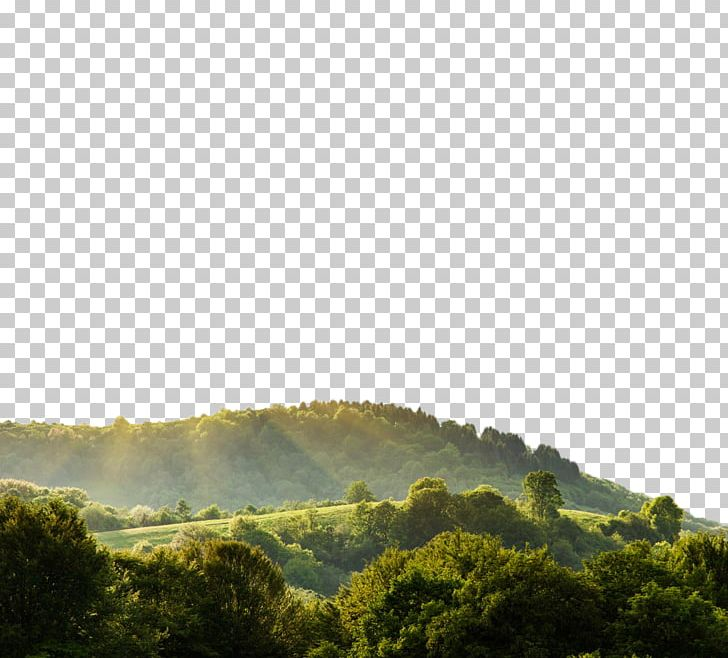 Nature Landscape Display Resolution PNG, Clipart, 1080p.