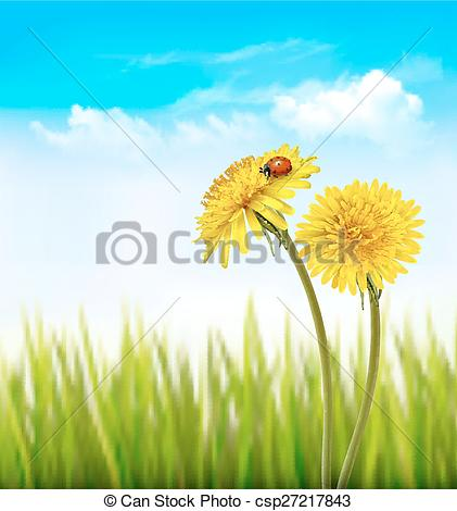 EPS Vector of Two yellow dandelions with a ladybug on a nature.