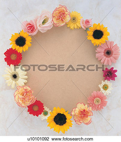 Stock Photo of plant, frame, nature, yellow, leaf, border, circle.
