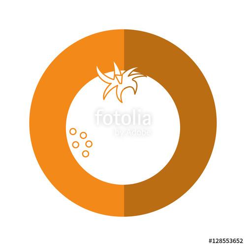fresh orange fruit nature yellow circle shadow vector illustration.