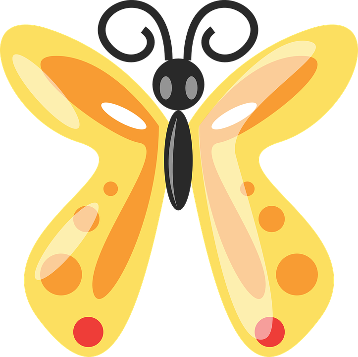 Free vector graphic: Butterfly, Animal, Insect, Bug.