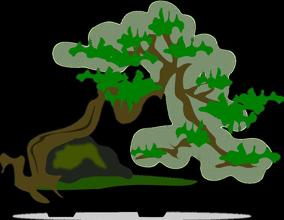 Imagem vetorial gratis: Bonsai, Clip Art, Flora, Natureza.