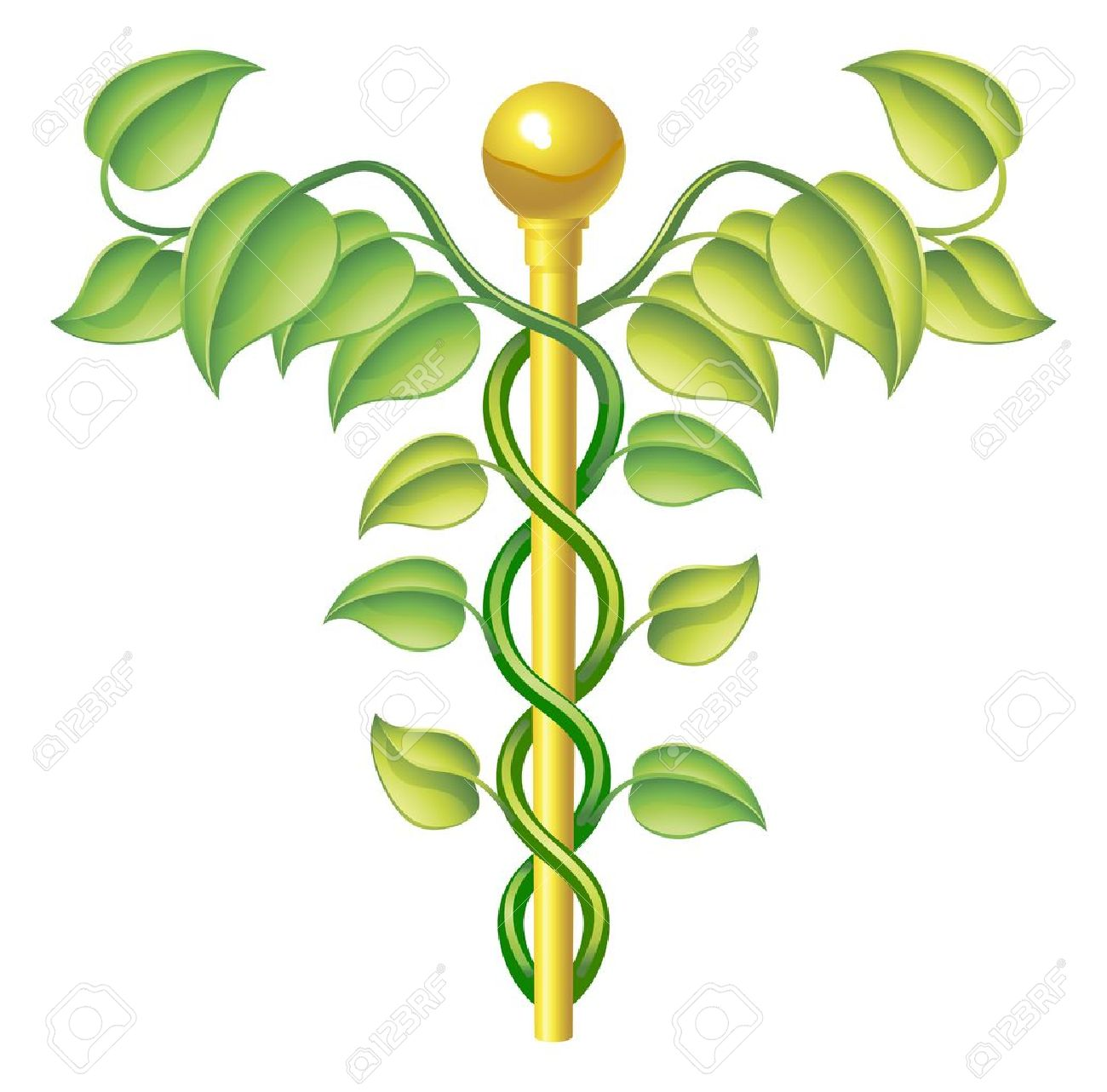 Natural Caduceus Concept, Can Be Used For Natural Or Alternative.