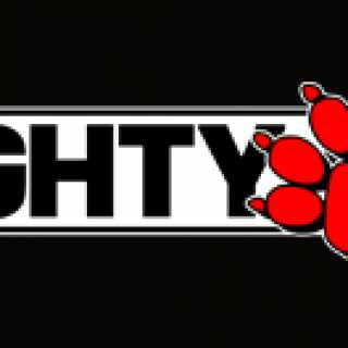 Naughty Dog, Inc. (Company).