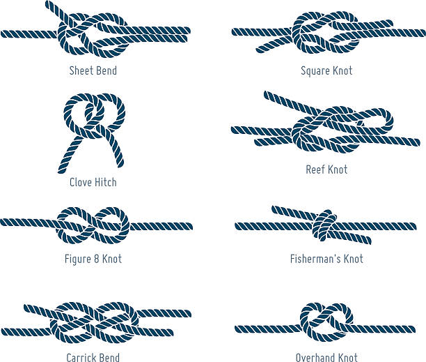 Best Tied Knot Illustrations, Royalty.