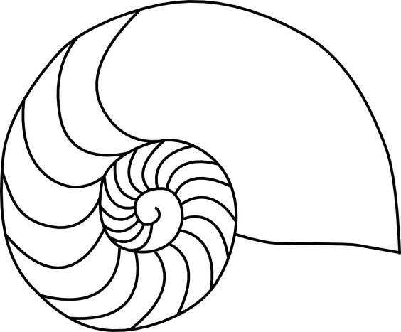 Nautilus Shell Clip Art.