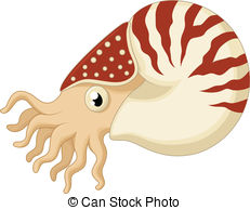 Nautilus Clipart and Stock Illustrations. 2,300 Nautilus vector.