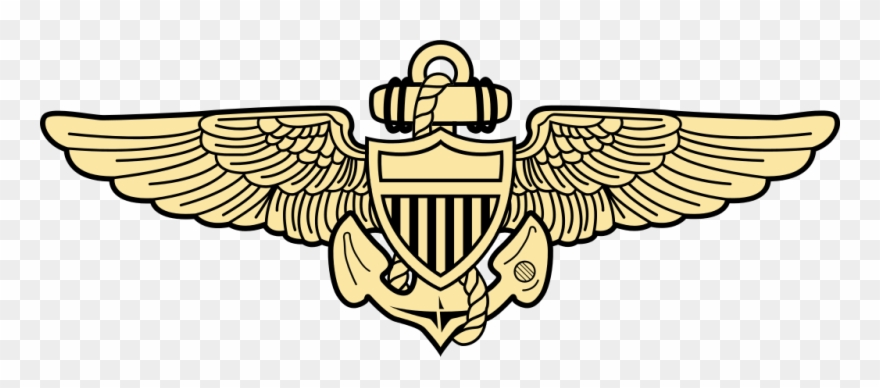 Naval Aviation Insignia.