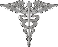 Navy rating insignia, Hospital Corpsman (HM).
