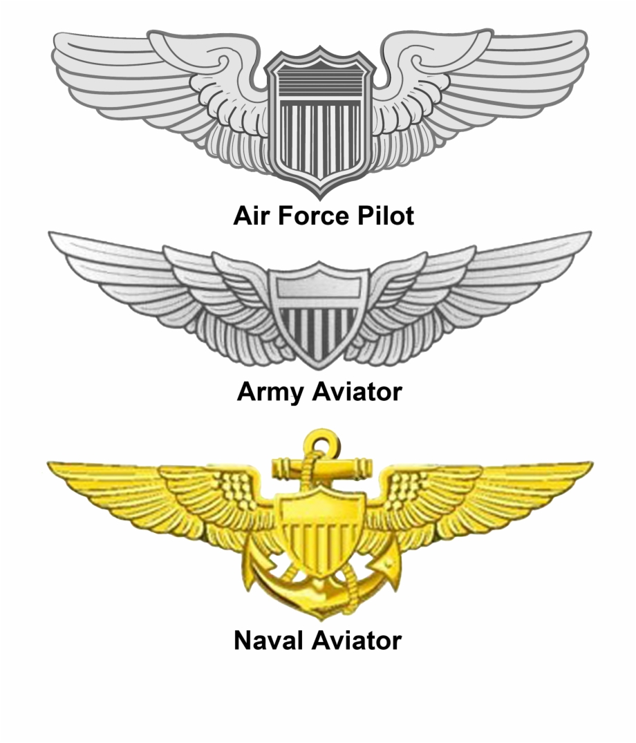 Pilot Wings Png.