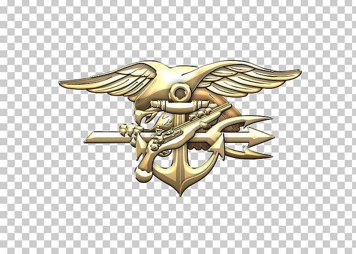 Special Warfare Insignia United States Navy SEALs SEAL Team.