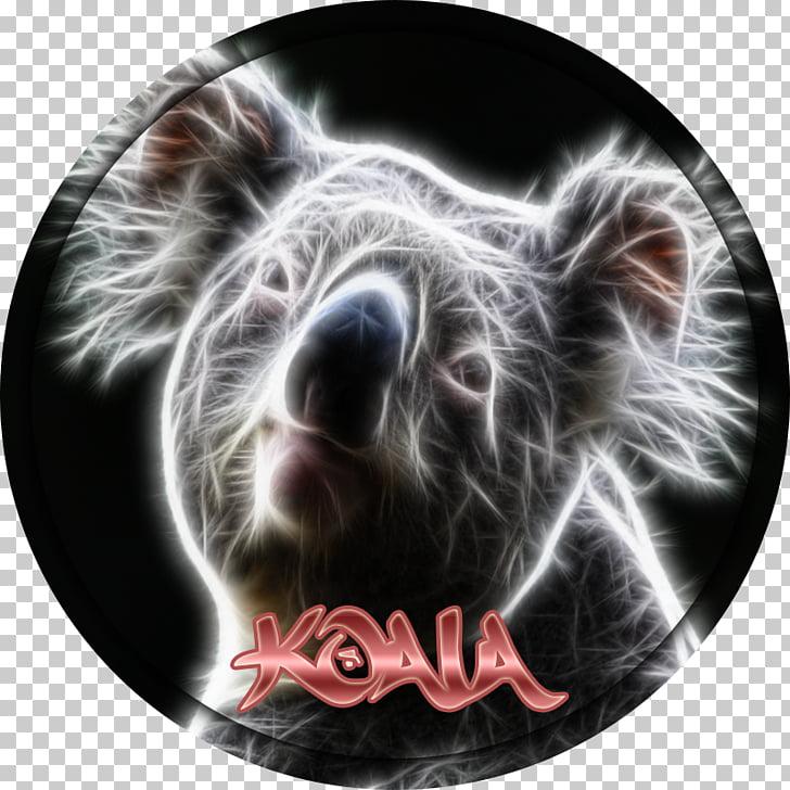 Snout Marsupial, ncs logo PNG clipart.