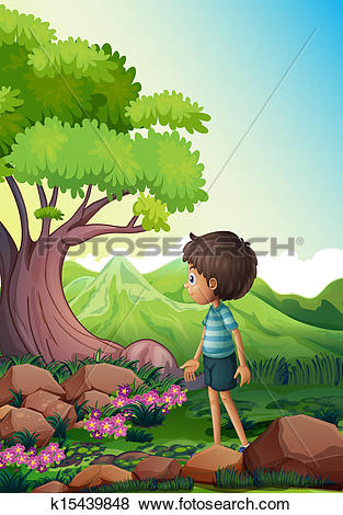 Clip Art of A boy near the giant tree in the forest k15439848.