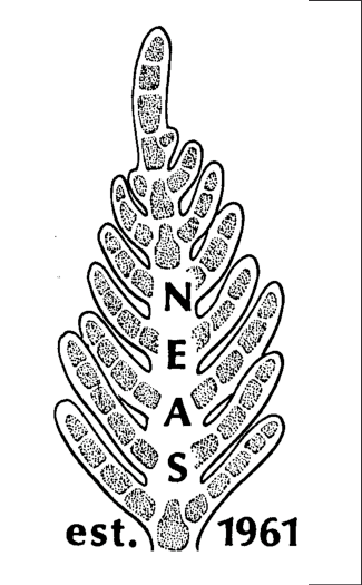 Permanent NEAS logo, an apex of Plumaria elegans drawn by.