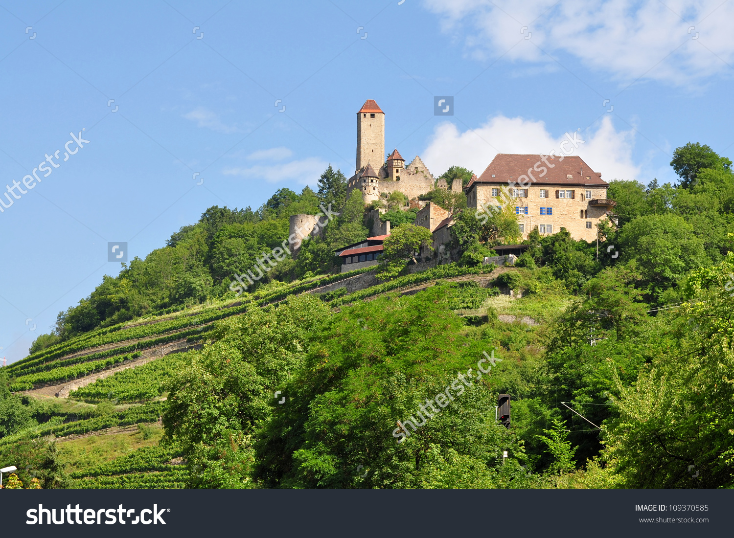Castle Hornberg In Neckar Valley In Germany Stock Photo 109370585.
