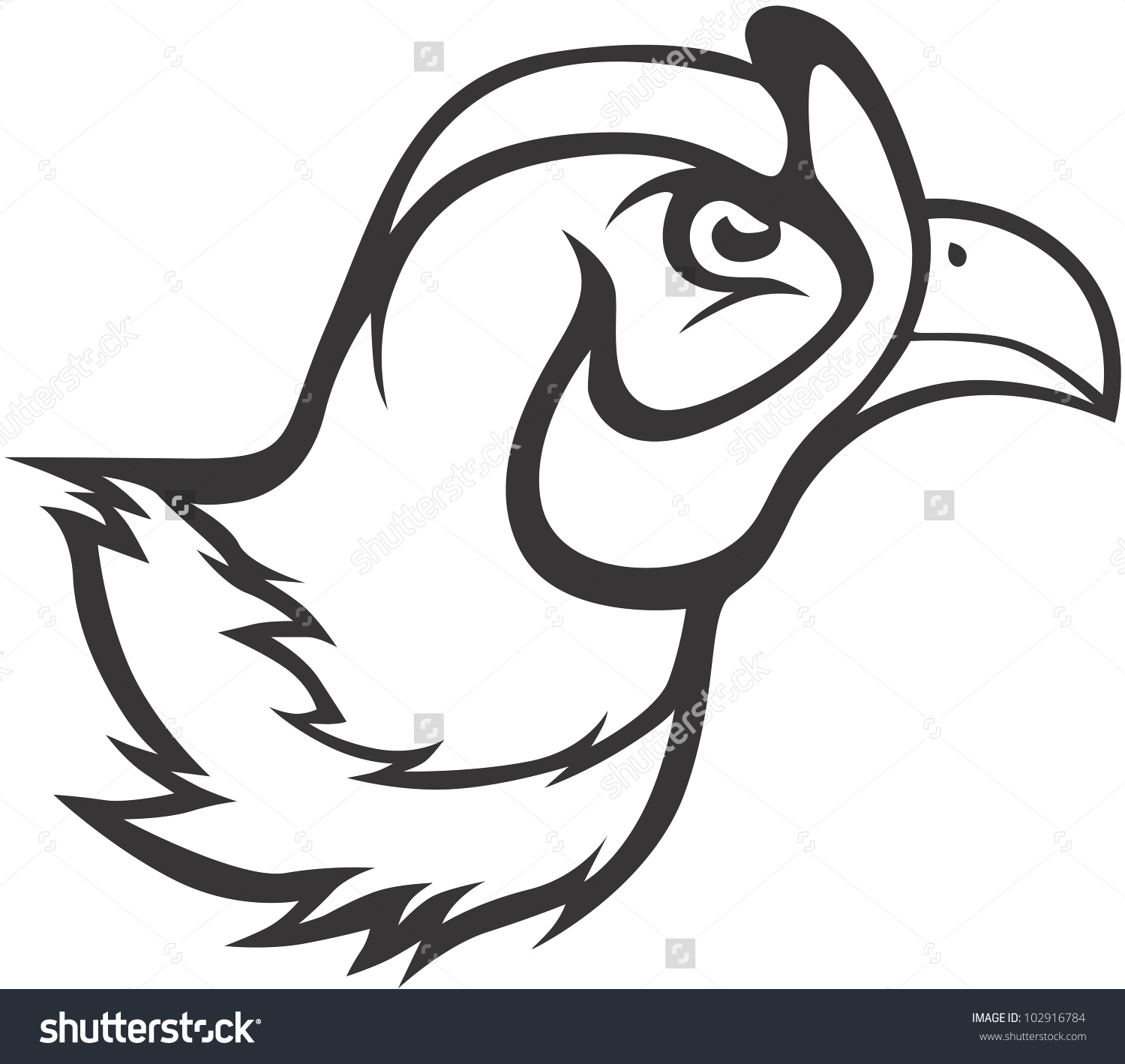 Smiling Pheasant Stock Vectors & Vector Clip Art.