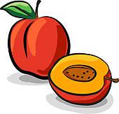 Nectarine Clipart.