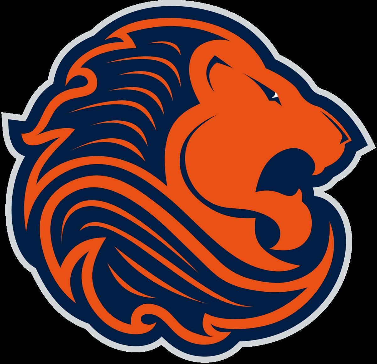 Netherlands men\'s national ice hockey team.