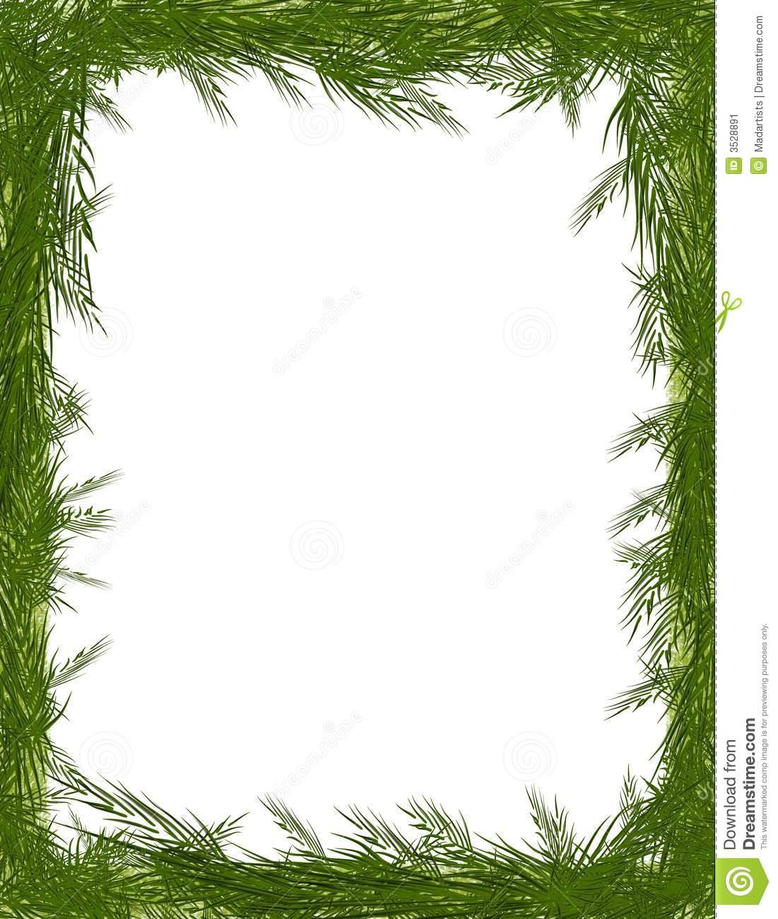 Pine Needle Tree Branch Frame Stock Image.