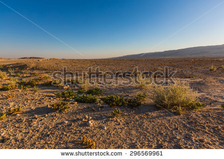 Negev Desert Stock Photos, Royalty.