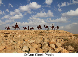 Stock Images of Camels caravan in the Negev desert, En Avdat.