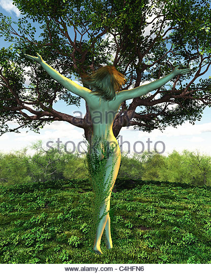 Green Nymph Stock Photos & Green Nymph Stock Images.