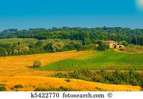 Frucht natur baum plantage landschaft frucht baum Stock Fotos und.