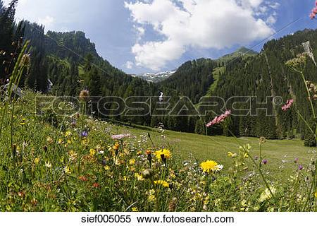 Stock Image of Austria, Vorarlberg, Raetikon, Stueberfall, Nenzing.