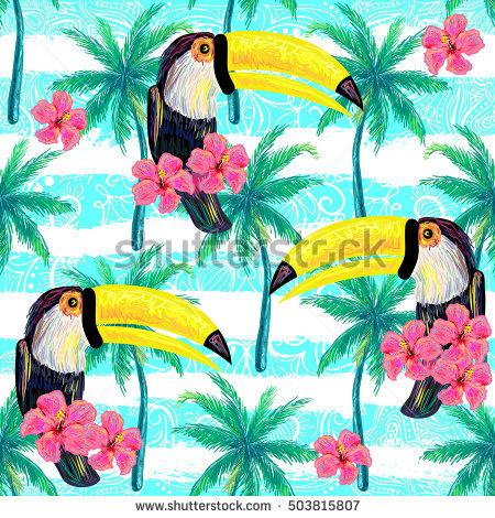 Tropical Birds Stock Photos, Royalty.