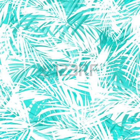 Neo tropics clipart #16
