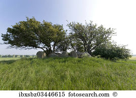 Neolithic period Images and Stock Photos. 163 neolithic period.
