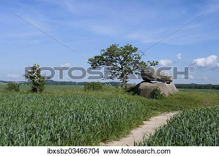 "Stock Photo of ""Dolmen, prehistoric grave, Neolithic period, Rerik."