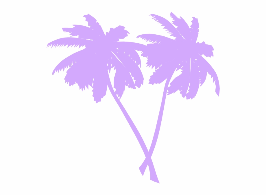 Transparent Palm Tree Vector.