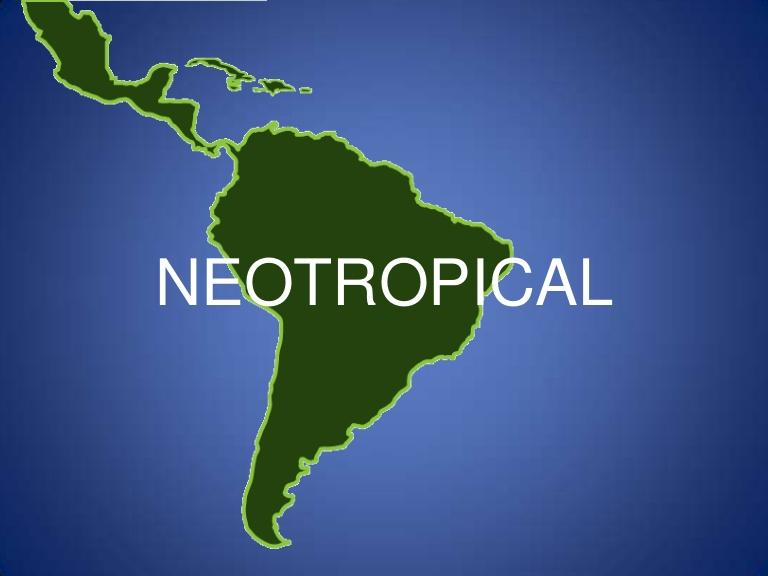 Neotropical ecozone.